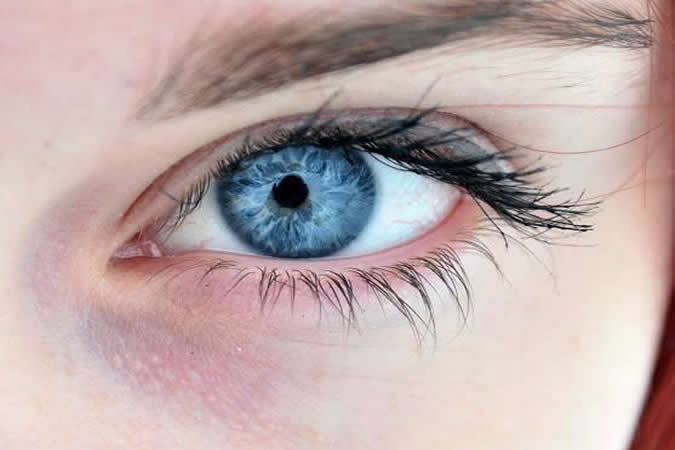 Digital photographs using an iridology camera are taken of your eyes