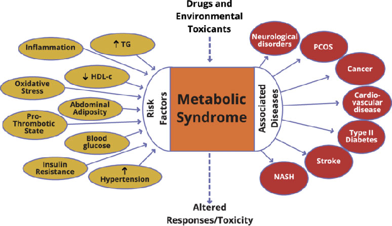 What exactly is Metabolic Syndrome?